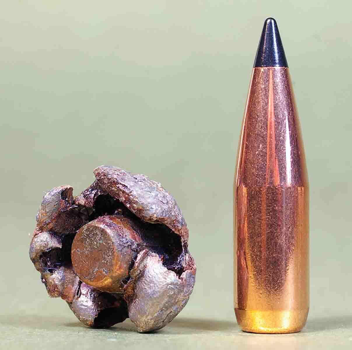 This 150-grain Scirocco fired from a .30-06 was retrieved from an elk. The bullet held onto 135 grains of its original weight.