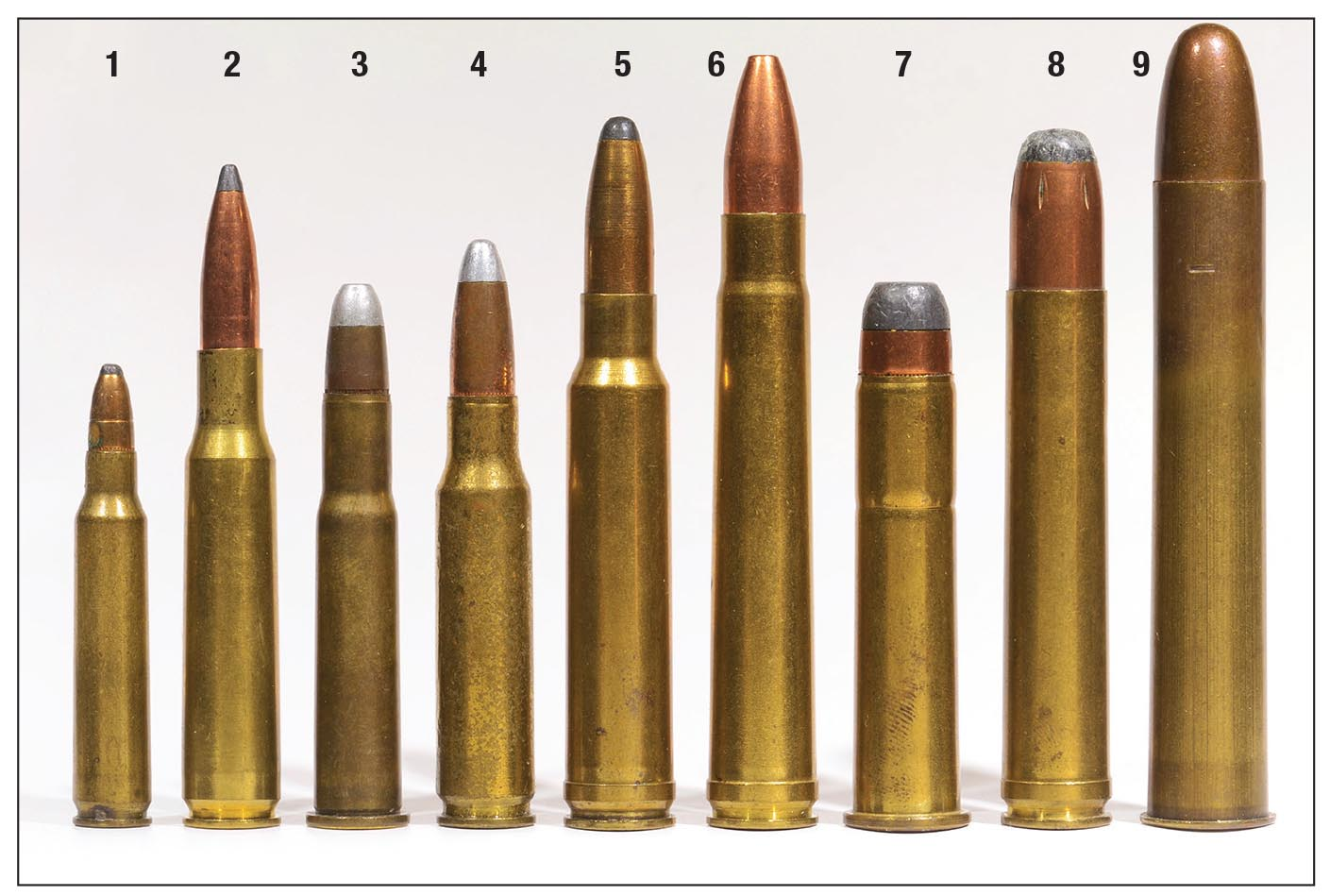 Just a few of the cartridges for which IMR-3031 can be used to good effect: (1) .223 Remington, (2) 7x57, (3) .30-30, (4) .308 Winchester, (5) .338 Winchester Magnum, (6) .375 H&H Magnum, (7) .45-70, (8) .458 Winchester Magnum and (9) .500 Nitro Express (3 inch).