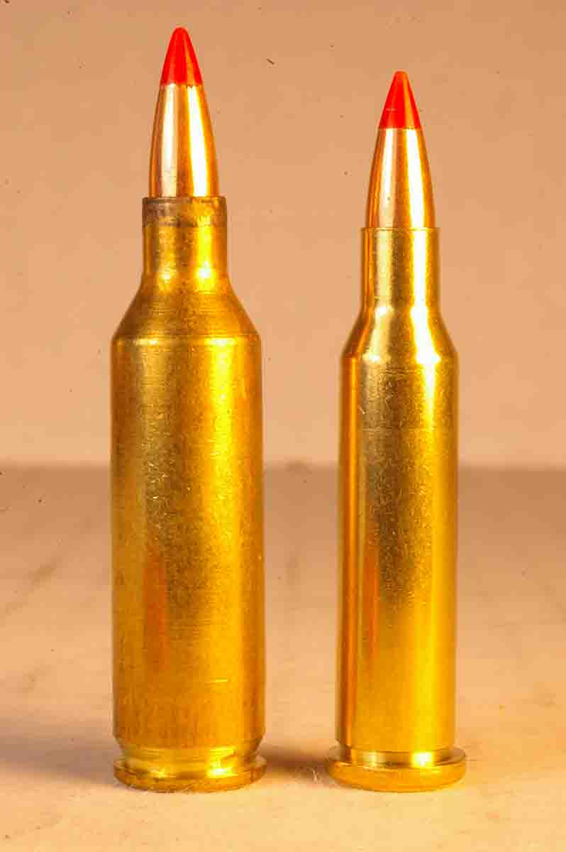 The .17 Hornet (left) looks like a larger version of the .17 Hornady Magnum Rimfire (right). The .17 Hornet will become a very popular cartridge if it garners even a small percentage of the .17 rimfire's popularity.